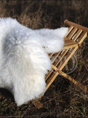 Skóra owcza